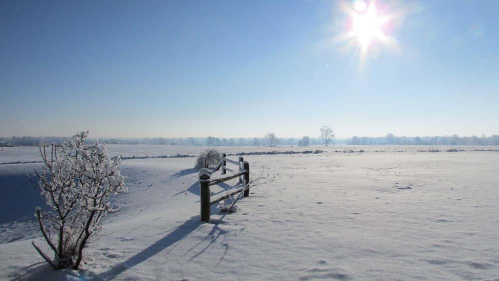 Snowy Field in Alabama